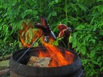 grilling Imagen de archivo