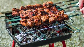 Grilling barbecue meat on wood coal. Man turns skewers. Man cooks appetizing hot shish kebab on metal skewers. Tasty. Meat pieces with crust. Cooking shashlik stock video