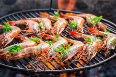 Grilling Big Prawns With Lemon And Parsley Stock Images