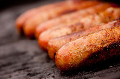 Grilling Brats Royalty Free Stock Image