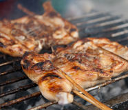 Free Grilling Chicken Royalty Free Stock Photos - 20351118