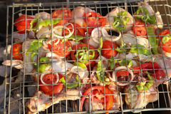 Grilling chicken on barbecue grill. Stock Images