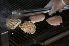 Grilling chicken Stock Photography