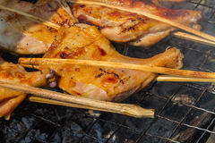 Grilling chicken on charcoal grill Royalty Free Stock Image