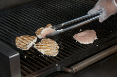 Grilling Chicken Royalty Free Stock Images