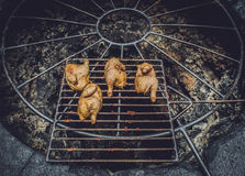 Grilling chicken on volcanic hot steam Stock Photo