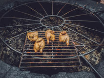 Grilling chicken on volcanic hot steam Royalty Free Stock Photo