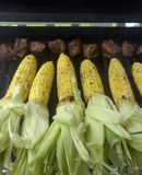 Grilling corn and steak tips Stock Image