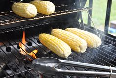 Grilling corns Stock Photo