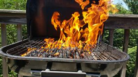 Grilling Royalty Free Stock Image