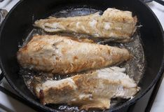 Grilling fish Stock Photos