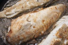 Grilling fish Stock Image