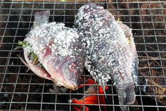 Grilling fish Stock Photo