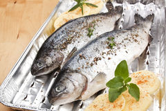 Grilling fish. Barbecue concept. Stock Photos