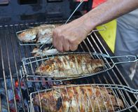 Grilling fish on barbecue. Grilling fish on a barbecue, top view stock photo