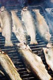 Grilling fish on barbecue Royalty Free Stock Photo