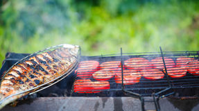 Grilling fish and tomatoes on campfire.  stock images