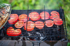 Grilling fish and tomatoes on campfire.  stock image