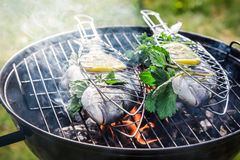 Grilling fresh fish with lemon and herbs Stock Images