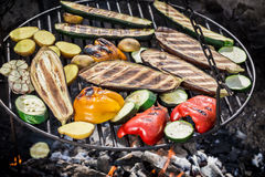 Grilling fresh vegetables with herbs in garden Stock Photography