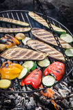 Grilling fresh vegetables with spices in garden Royalty Free Stock Photo