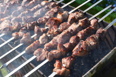 Grilling marinated meat on a brazier. Grilling marinated meat on a brazier Stock Photography