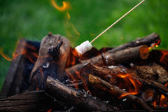 Grilling marshmallows on fire. Grilling marshmallows on stick. Fire, family fun Stock Photo