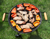 Grilling meat and vegetables Stock Images