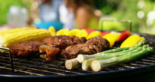 Grilling meat and vegetables on barbecue