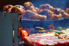 Grilling meat and vegetables over the coals. Stock Photos