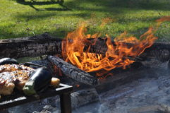 Grilling outdoors Royalty Free Stock Photography