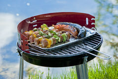 Grilling outdoors Royalty Free Stock Photo