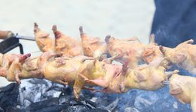 Grilling poultry quails Royalty Free Stock Photography