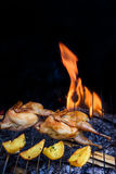 Grilling poultry quails and fresh juicy vegetables in a restaurant Royalty Free Stock Photos