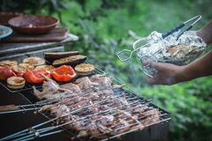 Grilling poultry quails royalty free stock images