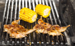 Grilling quail Royalty Free Stock Images
