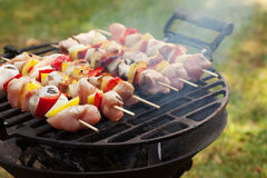 Grilling shashlik. Stock Images
