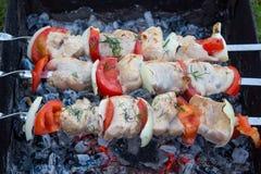 Grilling shashlik Royalty Free Stock Image