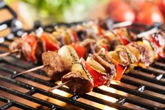 Grilling shashlik on barbecue grill Royalty Free Stock Photography