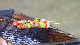 Grilling shashlik on barbecue grill stock video footage