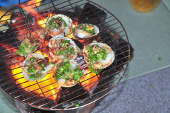 Grilling shellfish and seafood on hot fire Stock Image