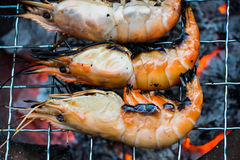 Grilling shrimp Stock Photo