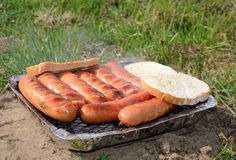 Grilling spring season Stock Photography