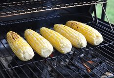 Grilling sweet corns Royalty Free Stock Image