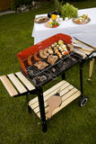 Grilling time! Royalty Free Stock Photography