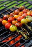 Grilling tomato skewers, skewers of colorful cherry tomatoes studded on rosemary sprigs with the addition of aromatic spices and s royalty free stock image