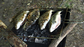 Grilling trout Royalty Free Stock Photos