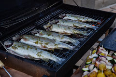 Grilling whole fishes on grate in garden. Grilled marinated fresh trouts over the charcoals on barbecue grill on summer time Stock Photos