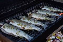Grilling whole fishes on grate in garden. Grilled marinated fresh trouts over the charcoals on barbecue grill on summer time Stock Photo