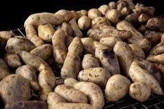 Grillkartoffeln Lizenzfreie Stockfotos